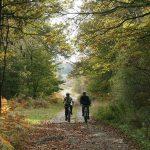 MONTHERME - Routes et Chemins du Parc - © C. Casalini