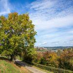 RANCENNES - Point de vue sur Charlemont Citadelle de Givet - © A. Leroy