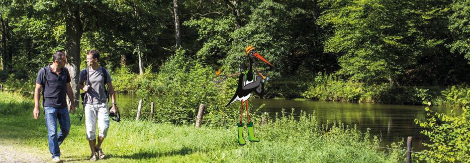 Se Balader Parc Naturel Regional Des Ardennes